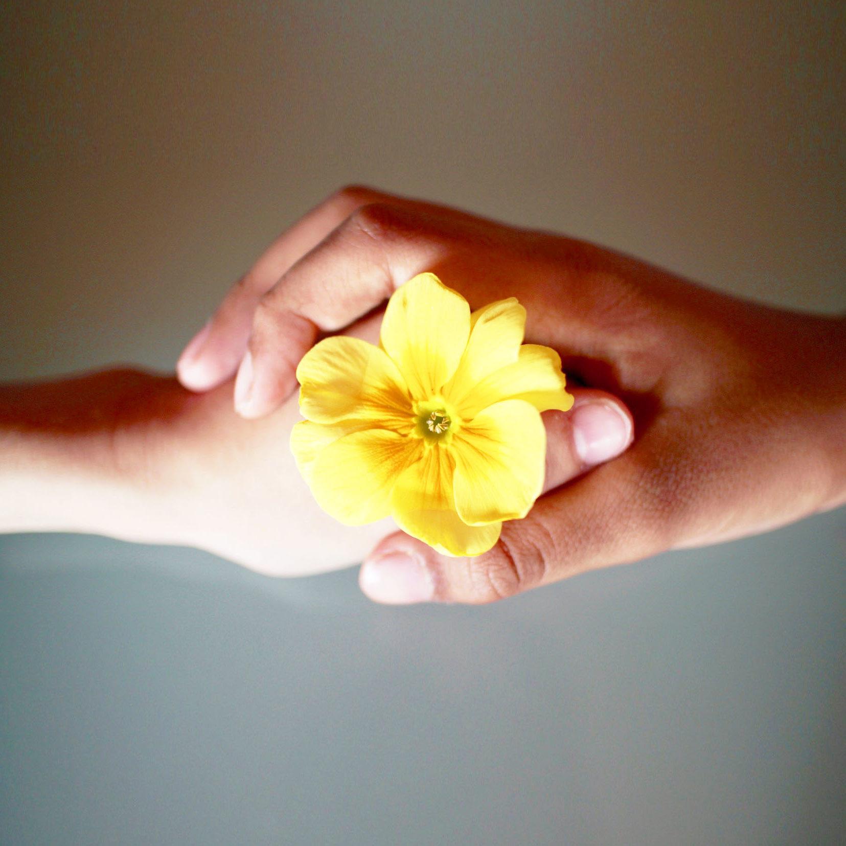 Manos con flor amarilla, apoyo emocional